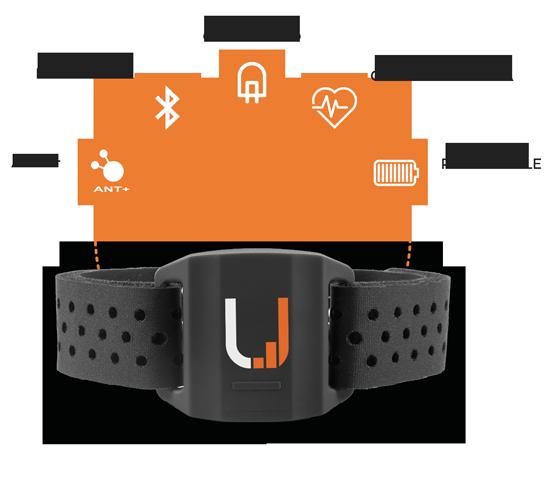Uptivo Armband - Sensore cardio da braccio